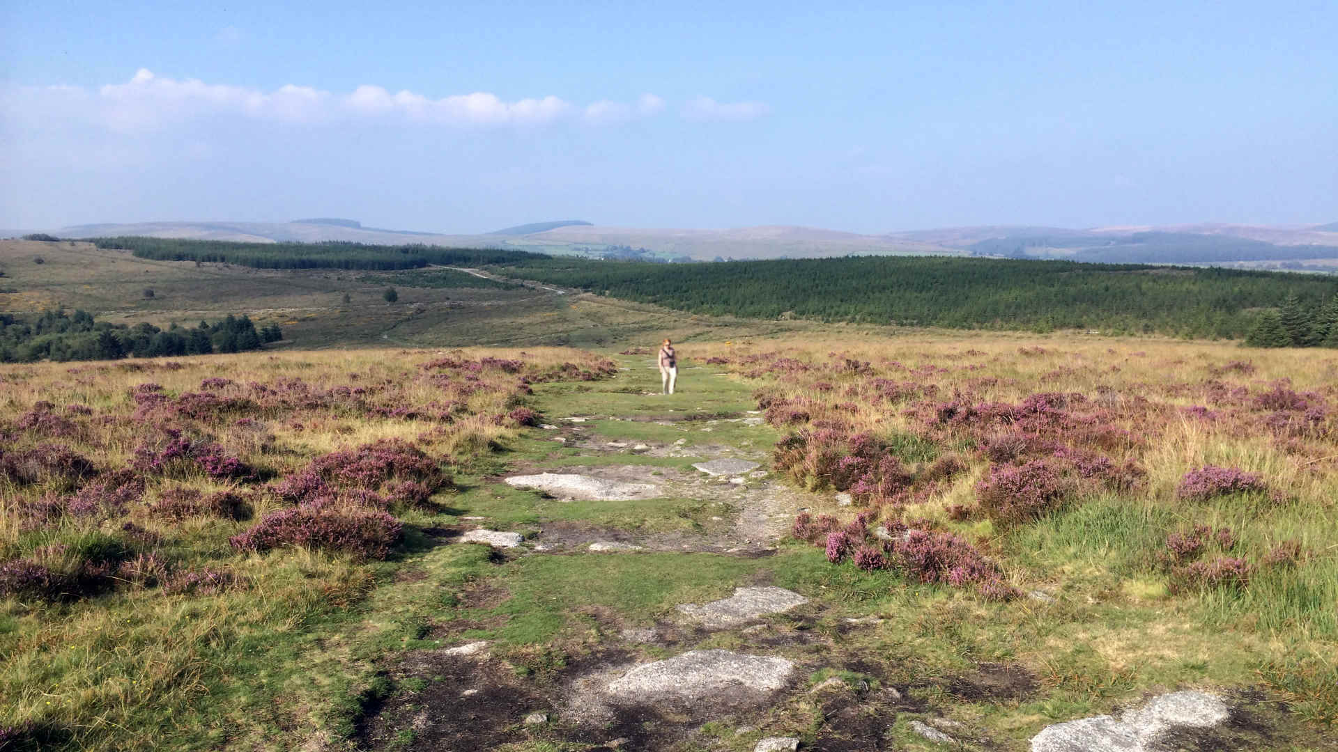 We highly recommend England's national parks: Dartmoor and Exmoor for their stunning views and serene walks.