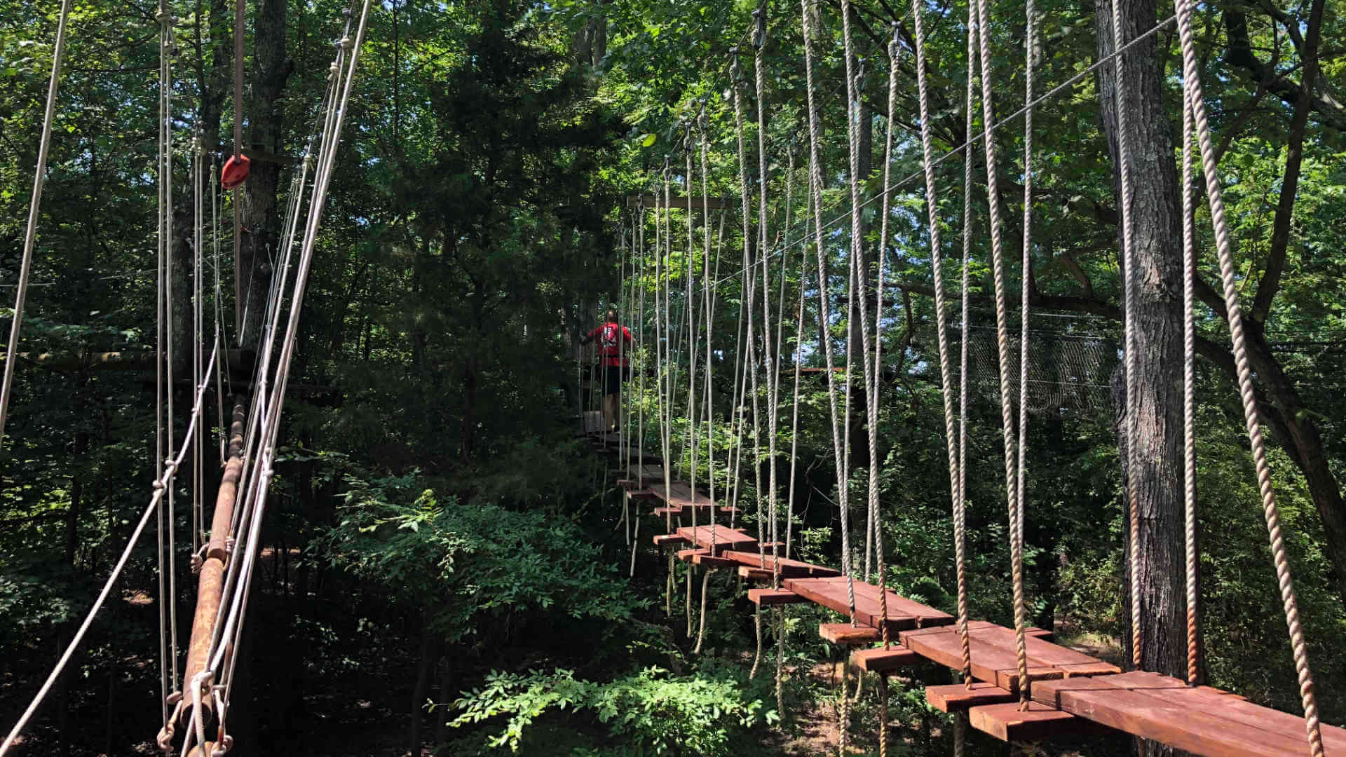 A section of the ropes course we visited during our staycation around Virginia.