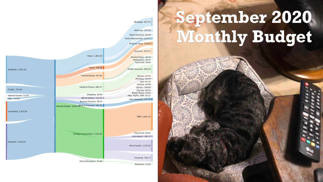 Our September 2020 Monthly FIRE Budget reveals all our spending details and sets out a donation goal for animal shelters in VA.