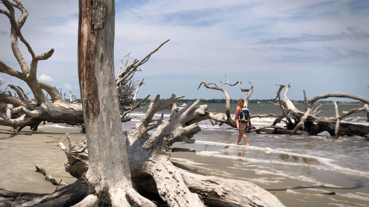 Taking a moment to remember the world outside our pandemic bubble—here enjoying Driftwood Beach on Jekyll Island, GA.