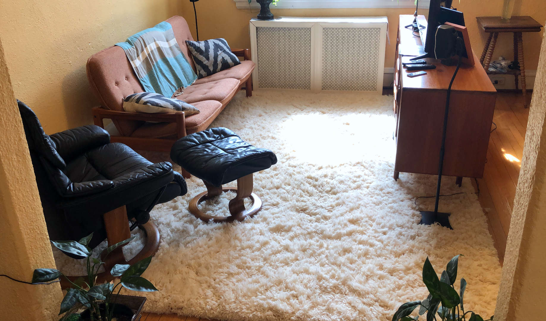 Our new cozy shag rug really brings the living room together!