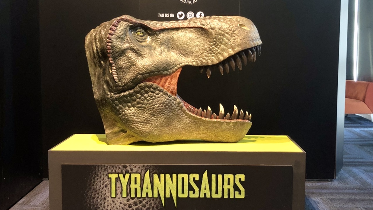 Tyrannosaurs were the focus of the dinosaur exhibit at our local science museum!